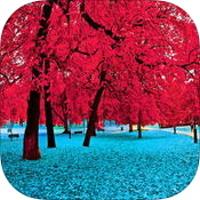 iOS限時免費 0126 FI